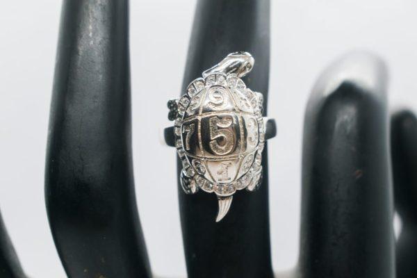 Motion Turtle ring
